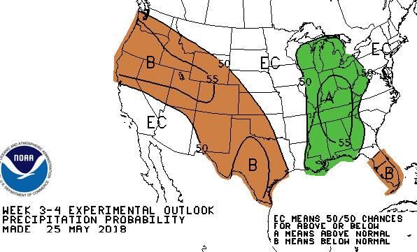 Forecast chart 6 image