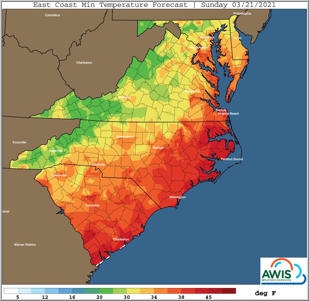 Minimum temp forecast for Sunday map