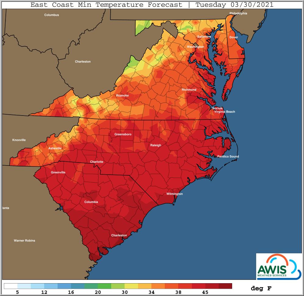 East coast minimum temperature forecast