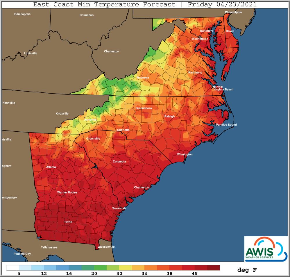Minimum temp forecast Friday chart image